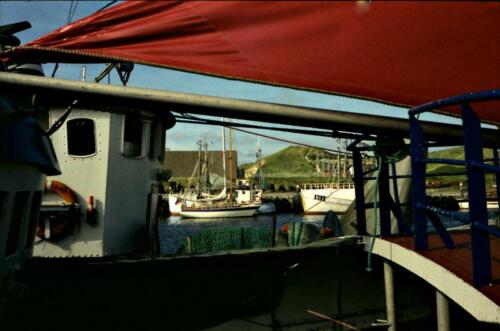 Hvide Sande Fischereihaven