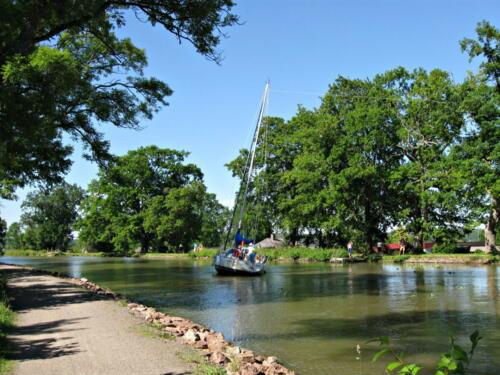 Götakanal, bei einem Ausweichmanöver blieb ein Fall in einer Baumkrone hängen